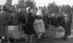 """挪威首相发布官方道歉声明 正式向二战""""德国女孩""""道歉"""