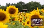 北京举办驻华使节招待会 向世界展示城市复兴新地标