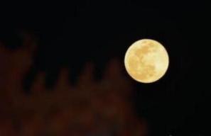 """本年度最后一个""""超级月亮""""巧遇春分 收好这份""""观天时刻表"""""""