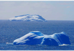 首次出现超过20℃的气温 南极创纪录高温如何产生?