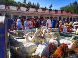 河南鲁山:消费扶贫展销会助力脱贫攻坚