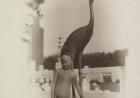 美国摄影师雷尼诺恩镜头中的晚清儿童生活