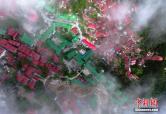 鸟瞰庐山上的牯岭镇:红绿屋顶掩映在绿荫中
