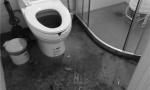 剛裝修的新房半月2次糞水倒灌 這小區業主有家難回