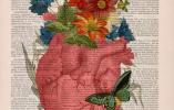 另类人体解剖素描:在古董报纸上绽放的花朵