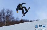 单板滑雪夏训:U型场地国家队期待新突破