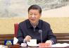 习近平:更加注重发挥宪法重要作用 把实施宪法提高到新的水平