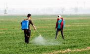 河南浚县:喷洒农药