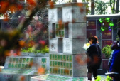 节地又省钱 南京去年超1000家家庭选择生态葬