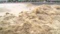 我国中西部强降雨引发洪涝灾害 已致15人死亡失踪