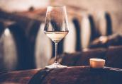 韩研究:少量饮烧酒仍会引发癌症 戒酒有利健康