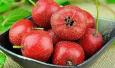 4种水果不宜饭后吃!葡萄山楂石榴柿子易造成胃溃疡!