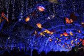 龟山探梅园灯光节让你在浪漫中度过5月!