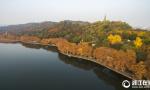 杭州西湖染五色