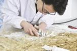 四川唯一出土五代时期壁画:赵廷隐墓葬壁画修复完成