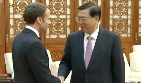 张德江会见法国总统马克龙