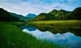 河南如何守护绿水青山蓝天净土?代表委员们这样点题