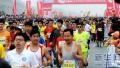 郑开国际马拉松赛小马拉松(开封段)3月25日举行