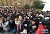 贵州人才博览会1.6万个岗位虚席以待