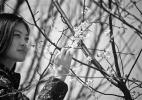 京东最大樱花园早樱盛放 庄园首届樱花节将于3月28日正式开幕