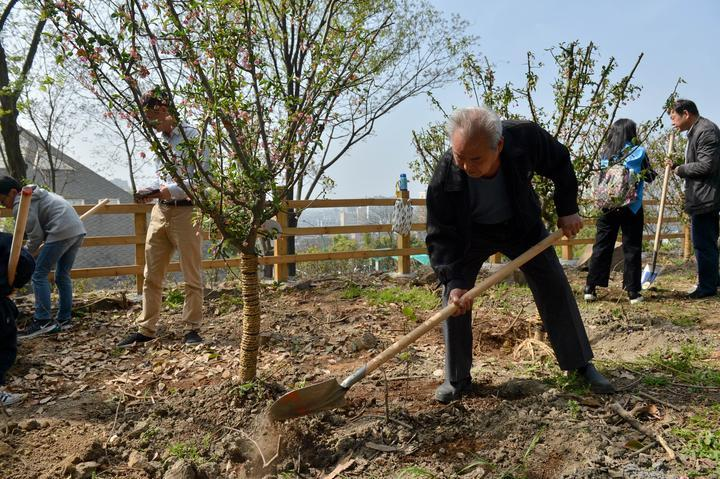 电子游戏娱乐大全:缅怀英烈 杭州萧山市民众筹20多万元种下246棵英雄树