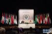 """阿拉伯国家呼吁对叙利亚""""化武袭击""""事件展开独立调查"""