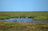 中国自然保护地达10000余处 占地域面积18%