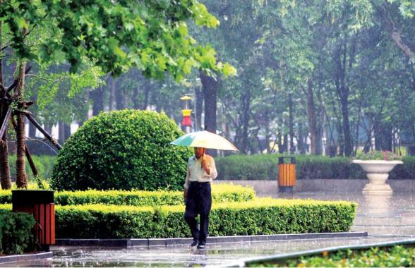 雨停了風來了氣溫也降了 這個春天讓人過完了四季