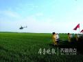 无人机喷药……济南举行农业重大病虫害应急防治演练