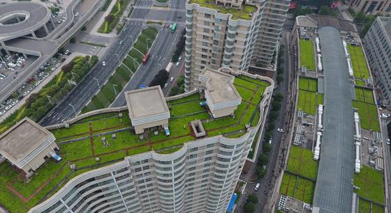 """郑州一区域""""空中绿地""""达12个足球场大小"""