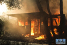 希腊火灾已致50死