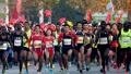 首届郑州国际马拉松10月28日鸣枪