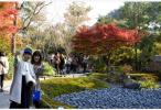 """游客骤增影响生活?日本观光厅实施首次""""观光公害""""情况调查"""