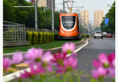 南京两条有轨电车线一条火爆一条冷清,这是为什么?