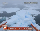 """""""雪龙""""号南极撞冰山已成功脱险 将前往长城站做进一步体检"""