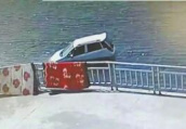 女司机倒车失误意外坠河 路人见义勇为展开生死大营救