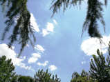今天小暑高温略微收敛 明晚到周二河南大部地区有雨