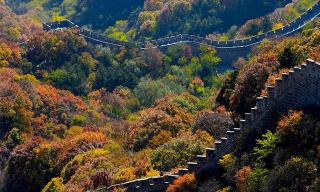 大片来了!北京八达岭秋色迷人 长城红叶相辉映