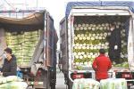 北京市商务局:蔬菜水果不断档 市民囤货没必要