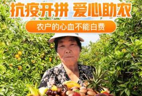 """拼多多与优农协会、中化发起""""农一分6合产品 公益联盟"""" 助力春耕稳产保供"""