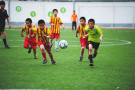 沈城校園足球完成大摸底 3000足球小將展拳腳
