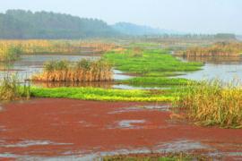 徐州市規劃2960平方公里生態紅線區