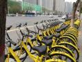 共享单车要包容更要监管