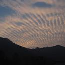 地震云帮你预测地震?