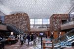 走进世界各国的图书馆 你最想在哪里读书?