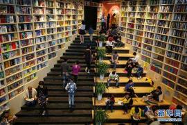 31.8%的网民读纸书 一年超十本