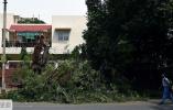 印度多地遭暴风雨袭击 40多人死亡