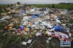 俄外长:荷兰无证据显示俄参与MH17空难 愿配合调查