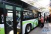 6月5日起青岛部分公交线路站点调整 5条线路临时停运