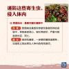 肝脏内藏数百寄生虫!吃货夏季谨防这些寄生虫感染